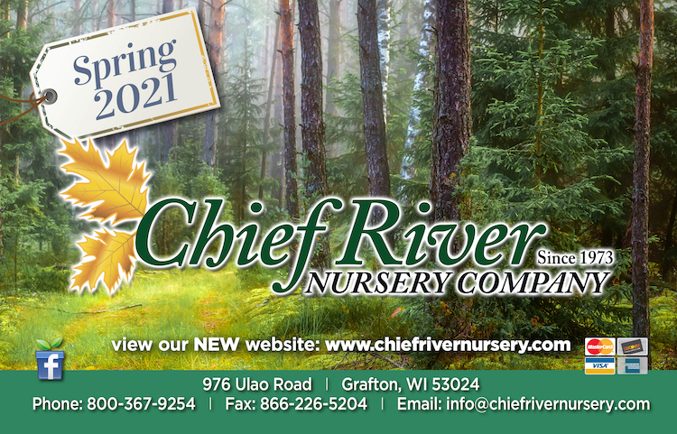 Download Chief River Catalog