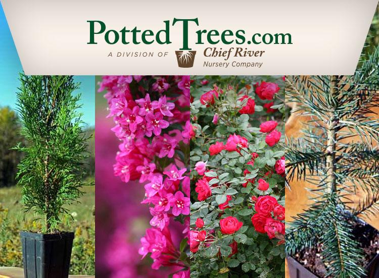 PottedTrees.com